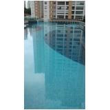 limpeza de piscina de PVC preço na Luz