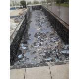 Limpeza emergencial para piscina na Serra da Cantareira